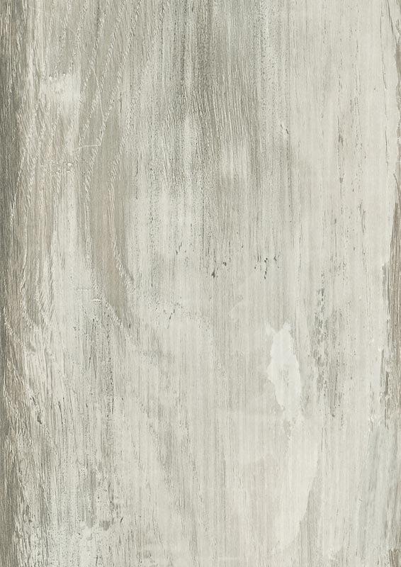 5029-RIVERA-ancient-oak